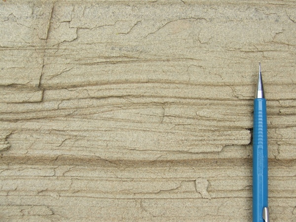 plane-laminated and ripple-laminated sandstone,
