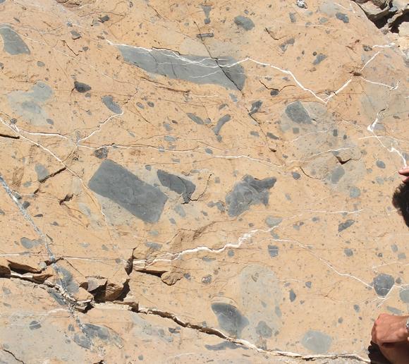 Permian debris flow deposit, near Death Valley, California (© 2009 clasticdetritus.com)