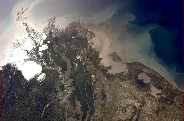 Mississippi River delta from the International Space Station (photo by @Cmdr_Hadfield)